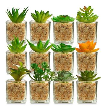 Kit 6 Plantas Mini Suculentas Artificiais Vaso Vidro 8x5,5cm - Interponte