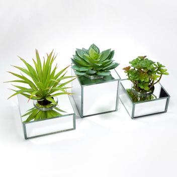 Trio de Cachepots Espelhados - Vasos Decorativos para Suculentas e Cactos - Cr vidros