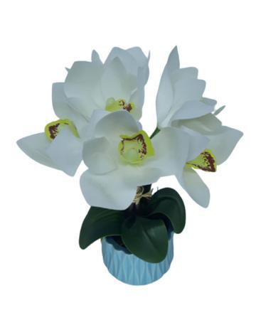 Imagem de Arranjo mini orquídea branca com vaso azul de cerâmica