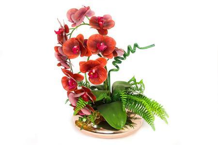 Imagem de Arranjo orquídeas vemelhas no vaso de vidro terrário rose