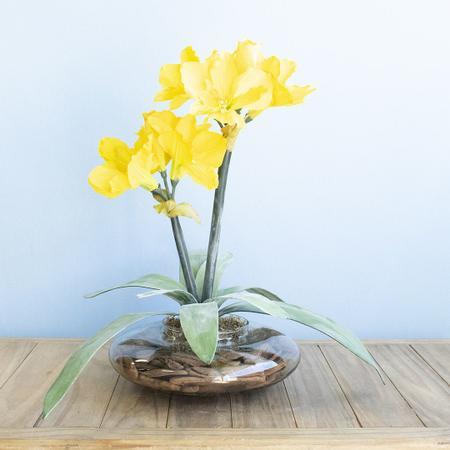 Imagem de Arranjos de Flores Artificiais Amarílis Amarelo no Vaso Transparente  Linha Permanente Formosinha
