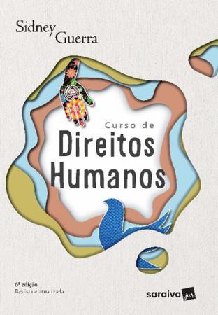 Imagem de Curso De Direitos Humanos