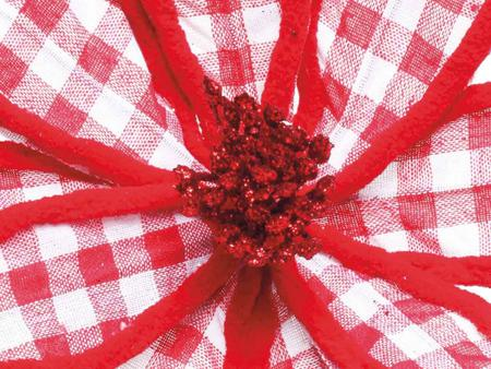 Imagem de Flor Natalina Poinsétia Quadriculada Vermelha E Branca