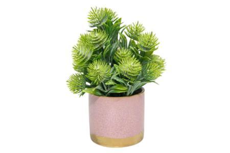 Imagem de Mini arranjo vaso cerâmica rosa com folhagens verdes