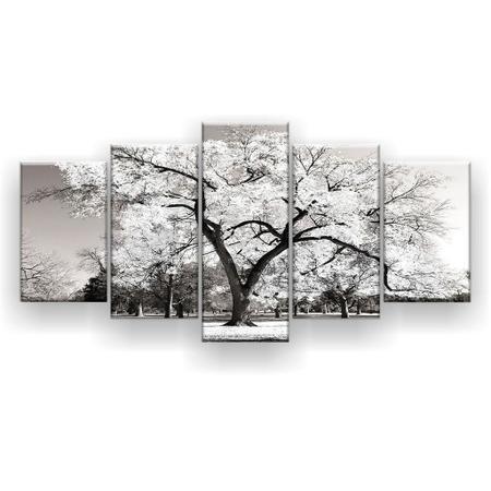 Imagem de Quadro Decorativo Árvore Grande Branca 129x61 5pc Sala