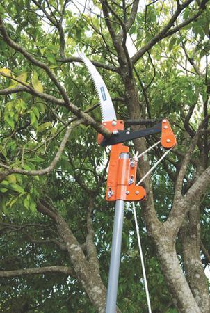 Imagem de Serrote Podador Tramontina para Galhos Altos em Aço sem Cabo