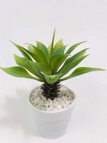 Imagem de Arranjo De Cactus Artificial