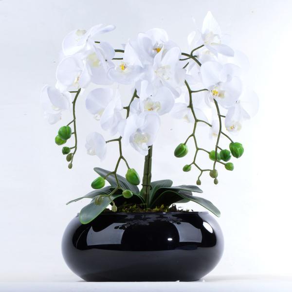 Imagem de Arranjo de Orquídea Artificial Branca de Silicone em Vaso Preto