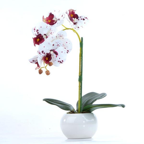 Imagem de Arranjo de Orquídea Artificial Tigre em Vaso Branco Elis