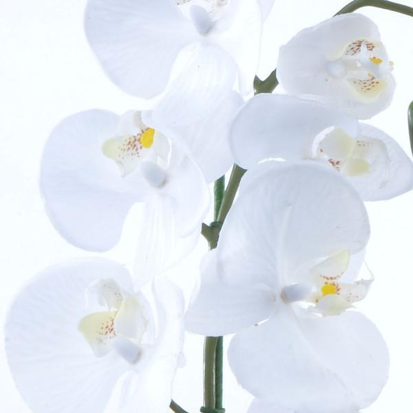 Imagem de Arranjo de Orquídea Branca de Silicone em Aquário Cobre Luiza