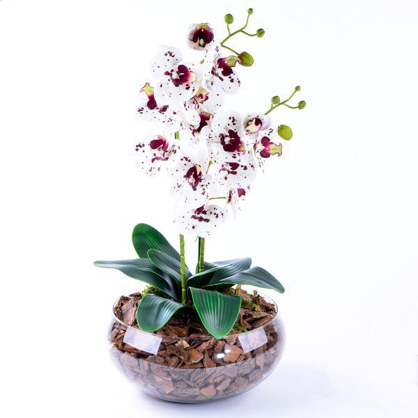 Imagem de Arranjo de Orquídea Toque Real Deluxe