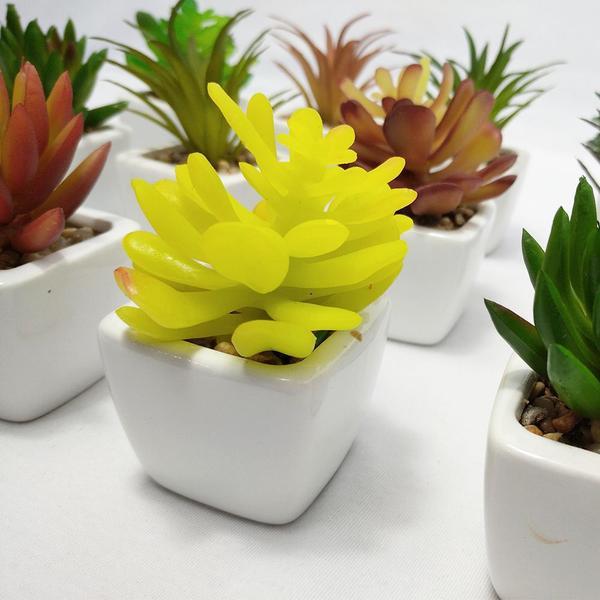 Imagem de Suculenta Artificial Mini Vaso Cerâmica Branco
