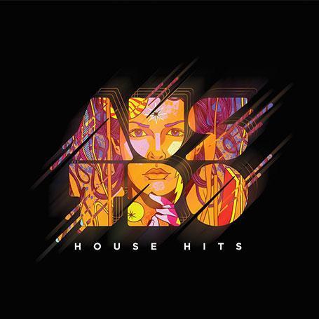 Imagem de Austro House Hits - CD