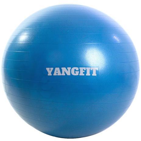 Imagem de Bola Pilates Suíça Exercícios Yoga 75cm Com Bomba Yangfit
