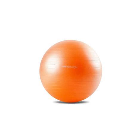 Imagem de Bola Suíça Ginástica Pilates Fit Com Bomba - Hidrolight 55cm FL13A