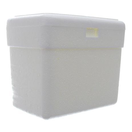 Imagem de Caixa Térmica de Isopor com Capacidade de 3 Litros Isoterm