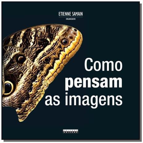 Imagem de Como pensam as imagens - Unicamp