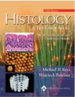 Imagem de Histology: a text and atlas - with correlated cell and  molecular biology - Lws - lippincott wilians & wilkins sd