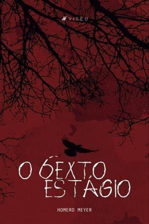 Imagem de Livro - O sexto estágio