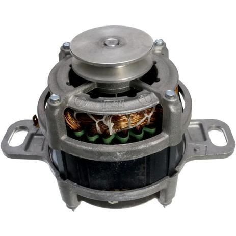 Imagem de Motor Elétrico 220V Original LM06 LM06A LTR10 LTE09 LTE12 LTC10 LT12 - 64390395