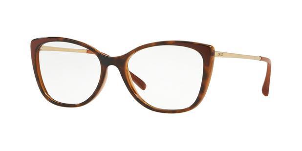 Óculos de Grau Grazi Massafera GZ3055 F916 Tartaruga Lente Tam 53 ... 867996b13c