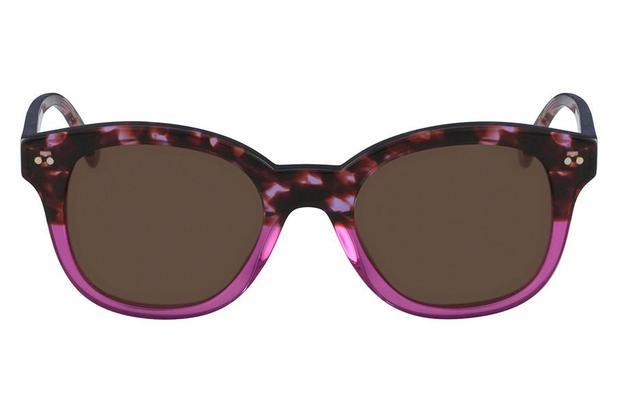 d15a3ac75ccd2 Óculos de Sol Ck CK4354S 535 51 Havana Fucsia - Calvin klein ...
