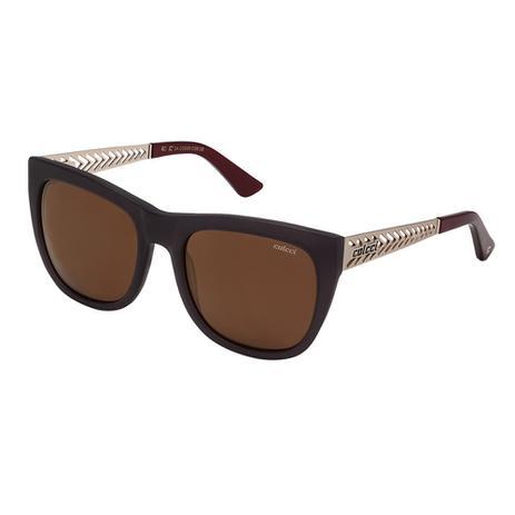 Óculos De Sol Feminino Fumê Com Dourado Fosco Colcci - Óculos de Sol ... 54c6ff11a8