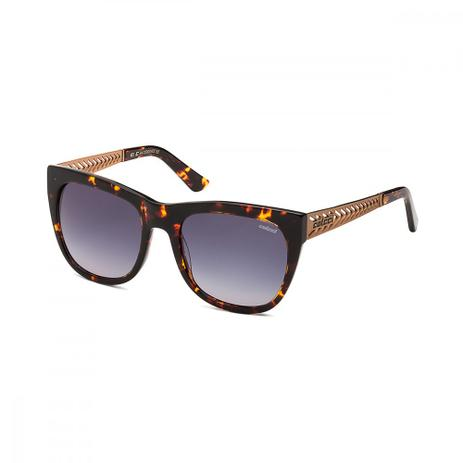 Oculos Sol Colcci C0009 Demi Marrom C Cobre L Cinza Degr - Óculos de ... e61aa3d1b9