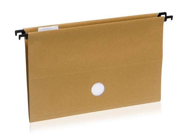 Pasta Arquivo Suspensa Kraft Completa 10 unidades 23,5x41cm Waleu ... 37b4470e84
