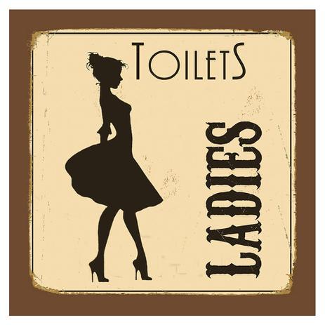 Imagem de Placa Decorativa 20X20cm Toilets Ladies LPDXX-007 - Litocart