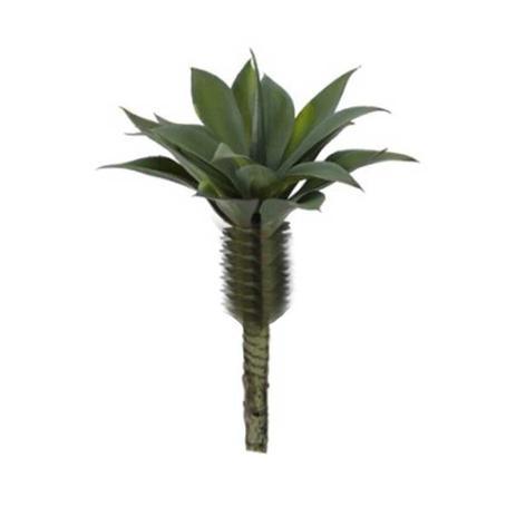 Imagem de Planta Decorativa Agave Suculenta Verde 20cm - DRossi