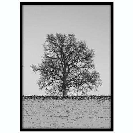 Imagem de Quadro com Moldura Preta Ávore em Preto e Branco 50x70cm