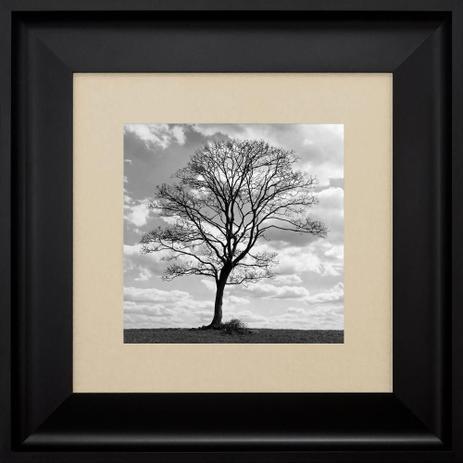 Imagem de Quadro com Moldura Preta Paisagem Árvore Seca 60x60cm