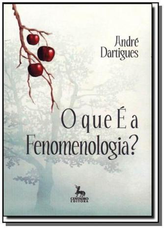 989a89ab71 Que e a fenomenologia