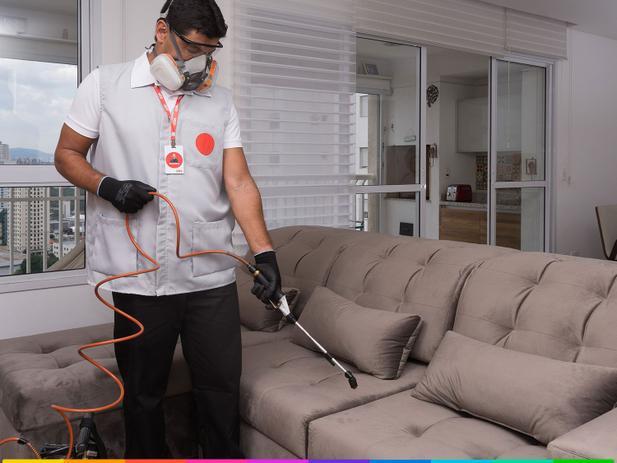 Imagem de Serviço especializado de impermeabilização de sofá de até 3 assentos