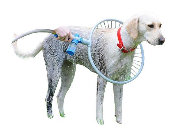 Imagem de Woof Washer 360 Chuveiro Pets Lava Jato Para Cachorros (Bsl-lac-1)