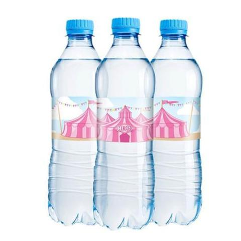 Imagem de Adesivo rótulo de garrafa - 06 unidades - Circo Rosa - Festcolor