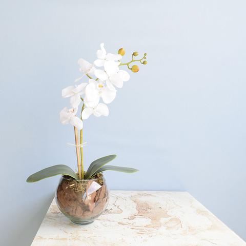 Imagem de Arranjo de Flor Artificial Orquídea Branca no Vaso de Vidro Pequeno