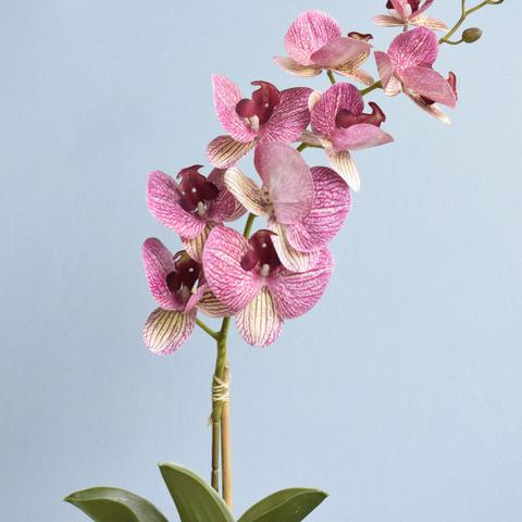 Imagem de Arranjo de Orquídea Artificial Rosa 3D no Vaso de Vidro Rose Gold Médio