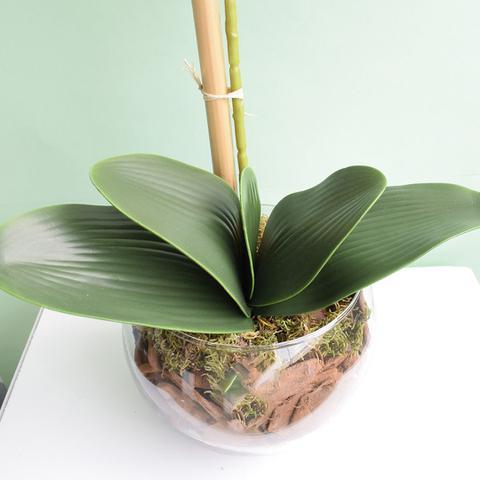 Imagem de Arranjo de Orquídea Artificial Rosa no Vaso Transparente Médio  Linha Permanente Formosinha