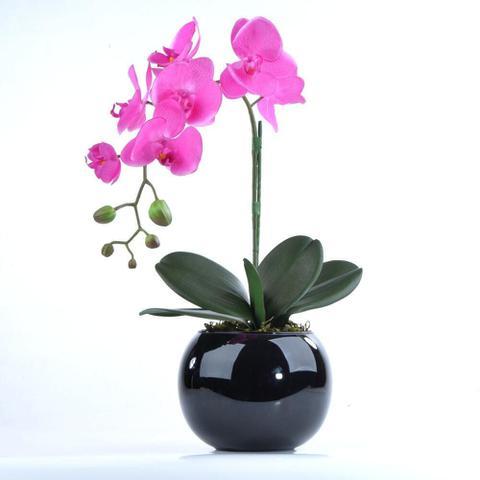 Imagem de Arranjo de Orquidea Pink Toque Real Pluma
