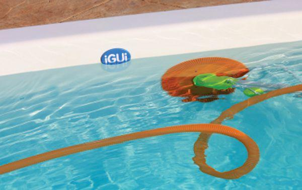 Imagem de Aspirador Automático para Piscinas Papaterra - iGUi