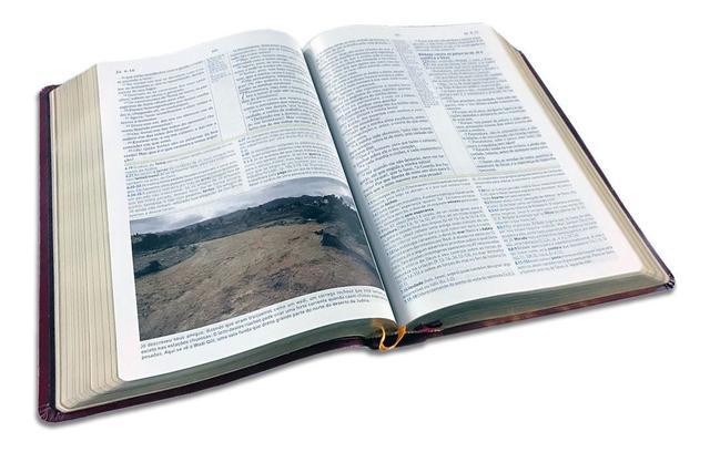 Imagem de Biblia de Estudo Holman Marrom