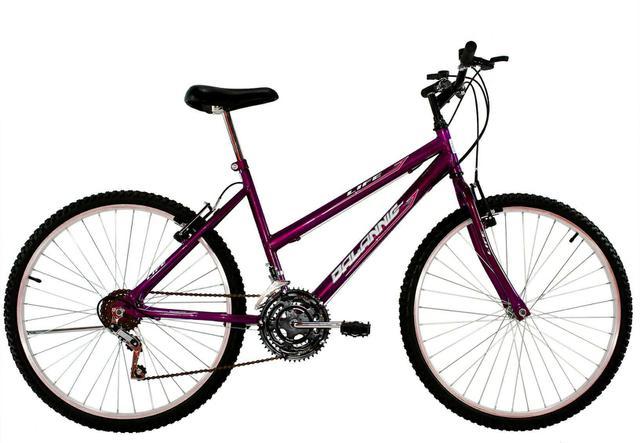 Bicicleta Dalannio Bike Life Aro 24 Rígida 18 Marchas - Roxo