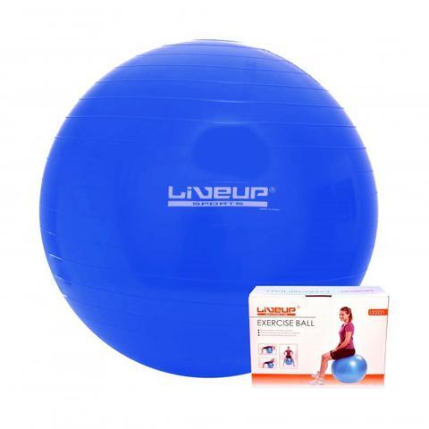 Imagem de Bola Suiça 65Cm Azul Anti Estouro Pilates Yoga Treino Exercício Academia Liveup