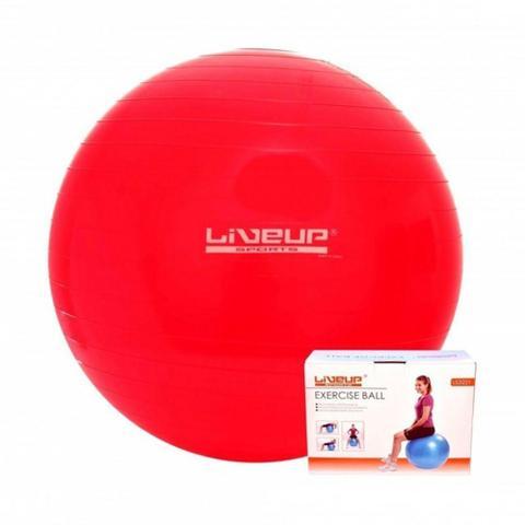 Imagem de Bola Suíça Para Pilates Liveup Sports Ls3221-45-Pr Premium 45Cm