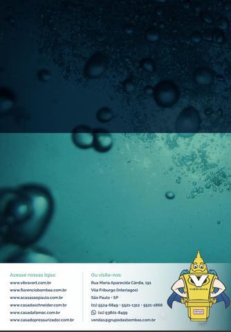 Imagem de Bomba Submersa De Poço Sapo + Boia De Nível Rymer 2000 220V