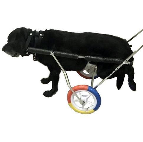 Imagem de Cadeira De Rodas Para Cão Cachorro Grande Porte De 25 A 50Kg