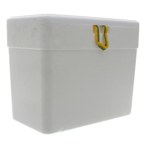 Imagem de Caixa Térmica de Isopor com Capacidade de 13 Litros Isoterm