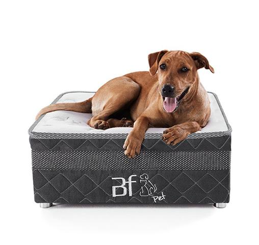 Imagem de Cama Box Pet Para Cachorros E Gatos + Lençol Impermeável - Caminha Pet - BF Colchões